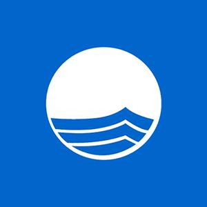 blue-flag-logo-freewave